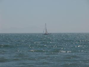 Too choppy to sail